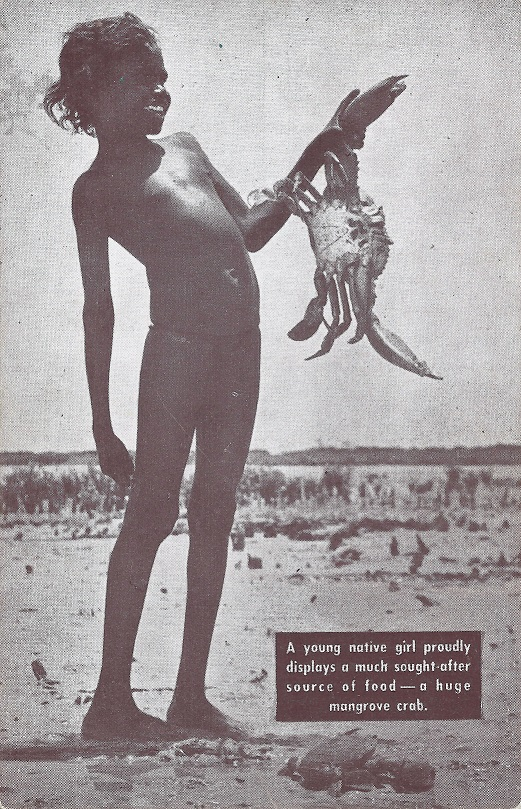 (Artist Unknown) - (Untitled) Published by Temperley Industries