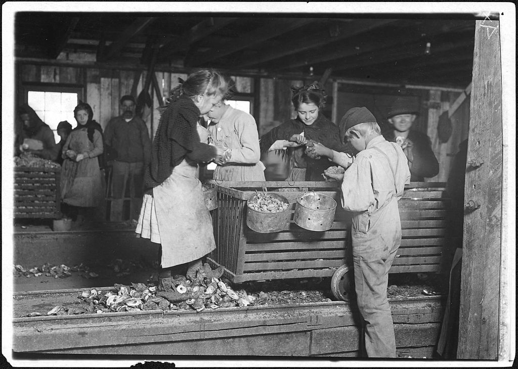 Lewis Hine - Little Lottie, regular oyster shucker (1911)