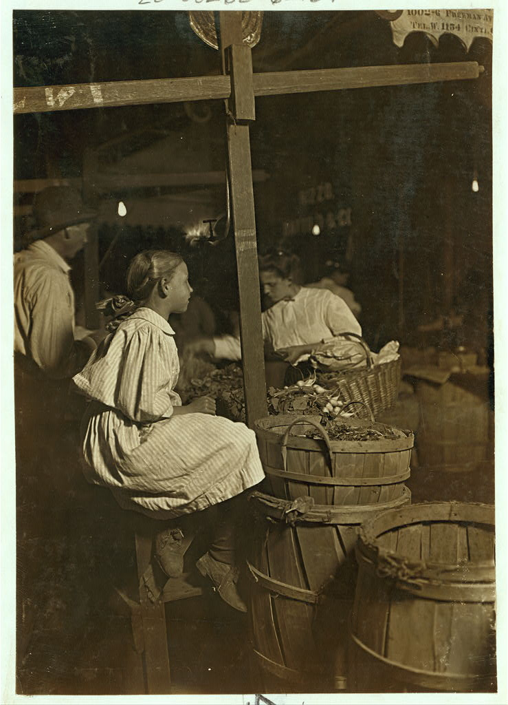 Lewis Hine - Selling Radishes (Aug. 22, 1908)
