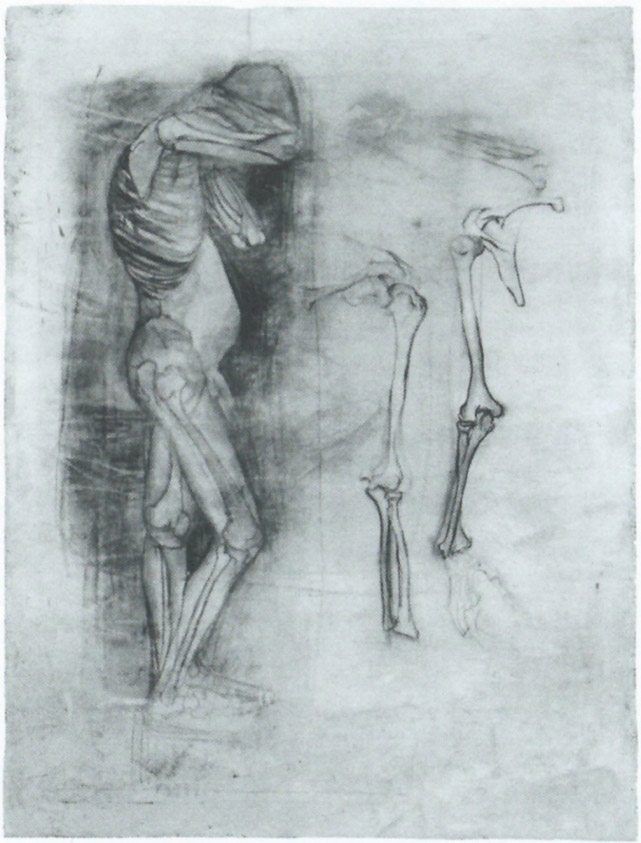 Paula Becker - Standing Child Nude with the Skeleton Drawn In, 1899 (cat. 108)