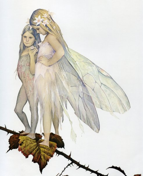Brian Froud - Cover Illustration from Faeries (1979)
