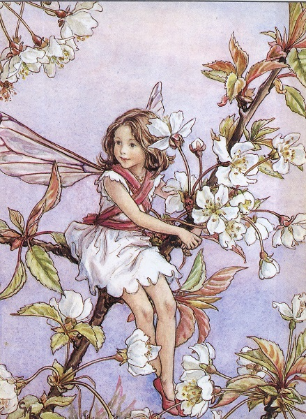Cicely Mary Barker - Flower Fairies of the Trees (1940)