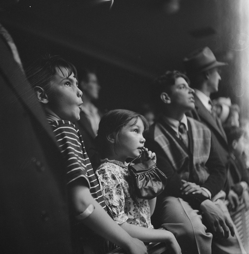 Esther Bubley - Children watching the animals at the National Zoological Park (1943)